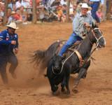 Makawao Rodeo 2007