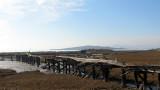 bridge_1398.jpg