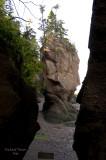 Nouveau Brunswick, La route de retour, Baie de Fundy pict4702.jpg