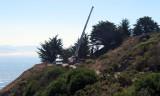 Tree-removal-3.jpg