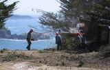 Tree-removal-8.jpg