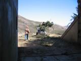 Tree-removal-9.jpg