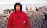 Antarctica - February, 2006