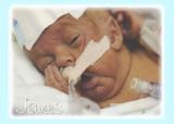 Sweet Baby James at 2lb6oz. Feb. 23, 2007