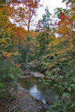 Southern Fall Colors - 2006