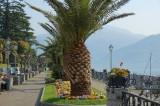 Lakefront  Mennagio.jpg