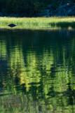 Merced Lake 2