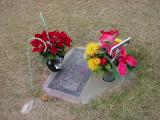 visiting Tarinaon thanksgiving day