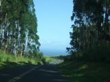 The road to the Vanilla Company
