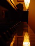 Sony 139LightMusic of the Night