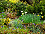 my secret garden.