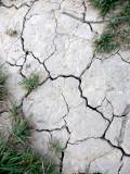 it's dry!