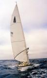 OCEAN DANCER  30C  195  1983