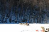 on frozen lake