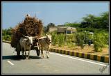 Rural Modes of Transportation