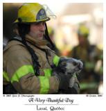 A Very Thankful Dog ...