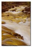 Golden river ...