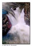 In the Dorwin Falls ...