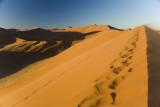 NAMIBIA : NAMIB DESERT