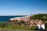Cabot Trail T Green Cove C a.jpg