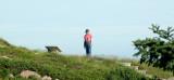 Cabot Trail T Green Cove C.jpg