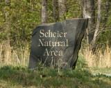 Scheier Natural Area