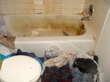 Bath...note the cat turds in the bath.