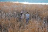 Martinez Shoreline Park, March 2007
