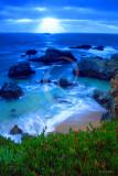 Coastal Sunbeam