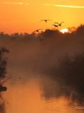 Anhinga Trail (Everglades NP)