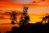 hurricane flossie (orange)