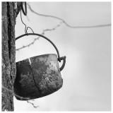Old pot, Les Leves