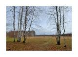 29.10.2006, Vladimirskaya oblast region, wating for the first snow