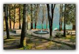 Abkhazia, park on the Stalin's datcha near Ritza lake