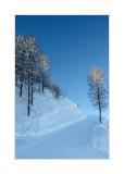 31.12.2006 - Big Sochi, Krasnaya polyana ski resort  Etude in a blue tones