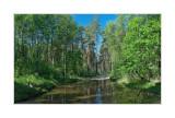 Vladimir region, Meshchera Lowlands, the wood road