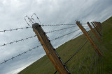 êîëþ÷êà íà ïëàòî Óêîê / long, long fence, not far from the frontier, made from barbed wire, with a several free open gates