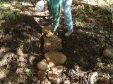 Hartshorne Trail Maintenance