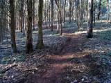Six Mile Run