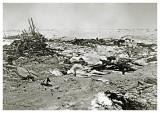 Kara Havet  29. Juli 1883