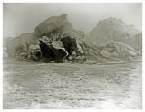 Kara Havet 18. August 1883