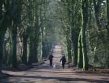 7 February - A cold walk