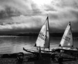 10 February - a few sailing boats