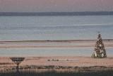 On Mordecai Island in a flood tide.