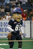 Chicago Rush mascot