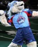 Nashville Kats mascot