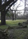 Locust Plantation