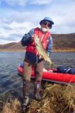 Tom on Long Tangle Lake