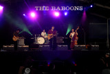 the Baboons   -   brbf 2007