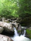 Virginia Creeper Trail - May 25, 2007